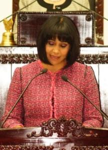 Dora Luz Castelán