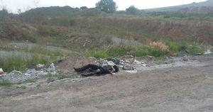 homicidios hidalgo (2)