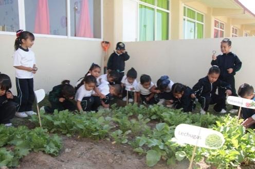 jardin de niños seph (2)